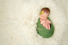 Kayla Alden Photography || Kansas City Newborn Pictures
